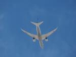 hana父さんが、ノーマン・Y・ミネタ・サンノゼ国際空港で撮影した全日空 787-8 Dreamlinerの航空フォト(写真)