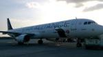 tsubasa0624さんが、アタテュルク国際空港で撮影したターキッシュ・エアラインズ A321-231の航空フォト(写真)