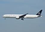じーく。さんが、成田国際空港で撮影したエバー航空 777-35E/ERの航空フォト(写真)