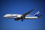 s.tさんが、バンクーバー国際空港で撮影した全日空 787-8 Dreamlinerの航空フォト(飛行機 写真・画像)