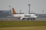 tsubasa0624さんが、成田国際空港で撮影したタイガーエア台湾 A320-232の航空フォト(写真)