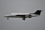 tsubasa0624さんが、成田国際空港で撮影したカナダ企業所有 35/36の航空フォト(写真)