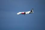 りゅーすけさんが、ワシントン・ダレス国際空港で撮影したシルバー・エアウェイズ 340Bの航空フォト(写真)