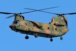 うめやしきさんが、厚木飛行場で撮影した陸上自衛隊 CH-47Jの航空フォト(飛行機 写真・画像)
