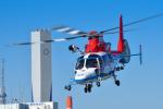 パンダさんが、東京ヘリポートで撮影した川崎市消防航空隊 AS365N3 Dauphin 2の航空フォト(飛行機 写真・画像)