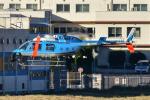 パンダさんが、東京ヘリポートで撮影した警視庁 206L-4 LongRanger IVの航空フォト(写真)