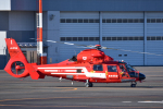 パンダさんが、東京ヘリポートで撮影した東京消防庁航空隊 AS365N2 Dauphin 2の航空フォト(写真)