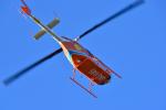パンダさんが、東京ヘリポートで撮影した新日本ヘリコプター 206L-3 LongRanger IIIの航空フォト(飛行機 写真・画像)