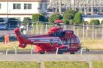パンダさんが、東京ヘリポートで撮影した東京消防庁航空隊 EC225LP Super Puma Mk2+の航空フォト(写真)