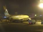 cassiopeiaさんが、アブダビ国際空港で撮影したエティハド航空 787-9の航空フォト(写真)