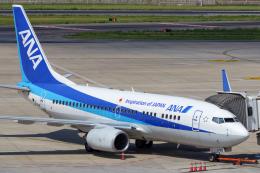 sunshy0621さんが、大連周水子国際空港で撮影した全日空 737-781の航空フォト(飛行機 写真・画像)