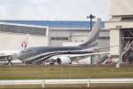 NRT_roseさんが、成田国際空港で撮影したプライベートエア 737-7JW BBJの航空フォト(飛行機 写真・画像)