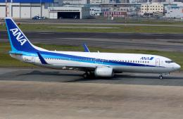 いおりさんが、福岡空港で撮影した全日空 737-881の航空フォト(飛行機 写真・画像)