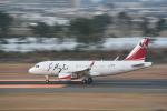 kumagorouさんが、仙台空港で撮影した中国企業所有 A319-115CJの航空フォト(写真)