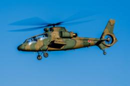 NCT310さんが、入間飛行場で撮影した陸上自衛隊 OH-1の航空フォト(飛行機 写真・画像)