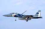 Dream Cabinさんが、新田原基地で撮影した航空自衛隊 F-15DJ Eagleの航空フォト(飛行機 写真・画像)