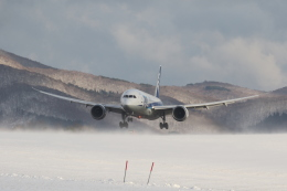 Tomochanさんが、函館空港で撮影した全日空 787-8 Dreamlinerの航空フォト(写真)