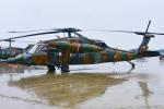 パンダさんが、新田原基地で撮影した陸上自衛隊 UH-60JAの航空フォト(写真)