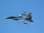 月明さんが、新田原基地で撮影した航空自衛隊 F-15DJ Eagleの航空フォト(飛行機 写真・画像)