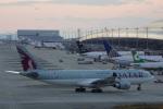 神宮寺ももさんが、関西国際空港で撮影したカタール航空 A330-202の航空フォト(写真)