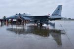 パンダさんが、新田原基地で撮影した航空自衛隊 F-15DJ Eagleの航空フォト(写真)
