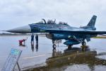 パンダさんが、新田原基地で撮影した航空自衛隊 F-2Bの航空フォト(写真)