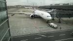 bellevueさんが、羽田空港で撮影したタイ国際航空 777-3D7/ERの航空フォト(写真)