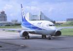 kumagorouさんが、石垣空港で撮影したエアーニッポン 737-54Kの航空フォト(飛行機 写真・画像)