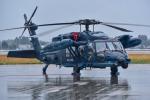 パンダさんが、新田原基地で撮影した航空自衛隊 UH-60Jの航空フォト(飛行機 写真・画像)