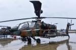 パンダさんが、新田原基地で撮影した陸上自衛隊 AH-64Dの航空フォト(写真)