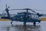 パンダさんが、新田原基地で撮影した航空自衛隊 UH-60Jの航空フォト(写真)