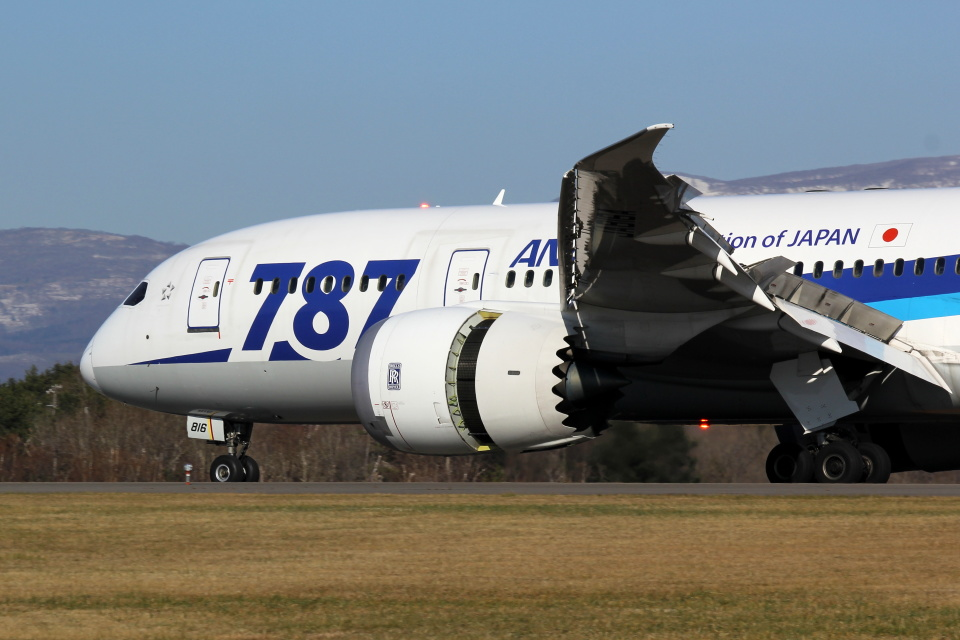 yuu@HKD/RJCHさんの全日空 Boeing 787-8 Dreamliner (JA816A) 航空フォト