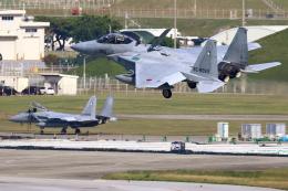 虎太郎19さんが、那覇空港で撮影した航空自衛隊 F-15DJ Eagleの航空フォト(写真)