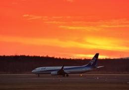 Cygnus00さんが、新千歳空港で撮影した全日空 737-881の航空フォト(飛行機 写真・画像)