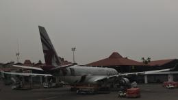 Take51さんが、スカルノハッタ国際空港で撮影したカタール航空 A330-202の航空フォト(飛行機 写真・画像)
