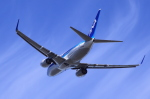 多楽さんが、成田国際空港で撮影した全日空 737-781の航空フォト(写真)