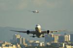 kaz787さんが、伊丹空港で撮影した全日空 787-8 Dreamlinerの航空フォト(写真)