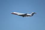 mogusaenさんが、羽田空港で撮影したウィルミントン・トラスト・カンパニー G-V Gulfstream Vの航空フォト(飛行機 写真・画像)