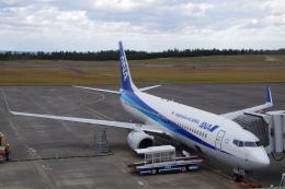 JA8037さんが、鳥取空港で撮影した全日空 737-881の航空フォト(飛行機 写真・画像)