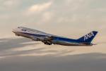 Dream Cabinさんが、福岡空港で撮影した全日空 747-481(D)の航空フォト(飛行機 写真・画像)
