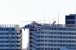 tsubasa0624さんが、羽田空港で撮影した朝日新聞社 A109SPの航空フォト(飛行機 写真・画像)