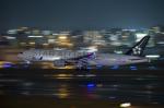 Dream Cabinさんが、福岡空港で撮影した全日空 777-281の航空フォト(飛行機 写真・画像)