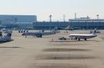 ハピネスさんが、関西国際空港で撮影した中国東方航空 A321-231の航空フォト(飛行機 写真・画像)