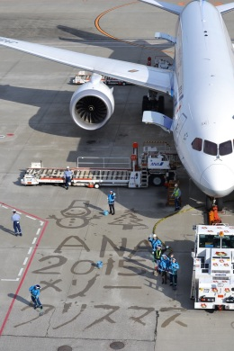 hirokongさんが、羽田空港で撮影した全日空 787-9の航空フォト(飛行機 写真・画像)