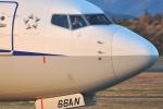 ピリンダさんが、静岡空港で撮影した全日空 737-881の航空フォト(写真)