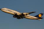 atsushi7353さんが、羽田空港で撮影したルフトハンザドイツ航空 747-830の航空フォト(写真)
