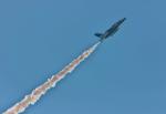 サボリーマンさんが、土佐清水分屯基地で撮影した航空自衛隊 T-4の航空フォト(飛行機 写真・画像)
