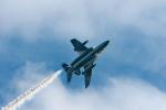サボリーマンさんが、土佐清水分屯基地で撮影した航空自衛隊 T-4の航空フォト(写真)