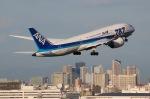surf511ykさんが、羽田空港で撮影した全日空 787-8 Dreamlinerの航空フォト(写真)