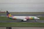 Wasawasa-isaoさんが、羽田空港で撮影したスカイネットアジア航空 737-4M0の航空フォト(写真)